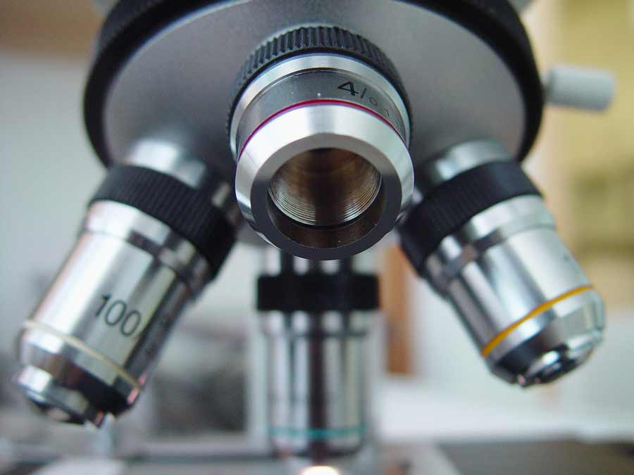 Découvrez comment les microbes nous gouvernent
