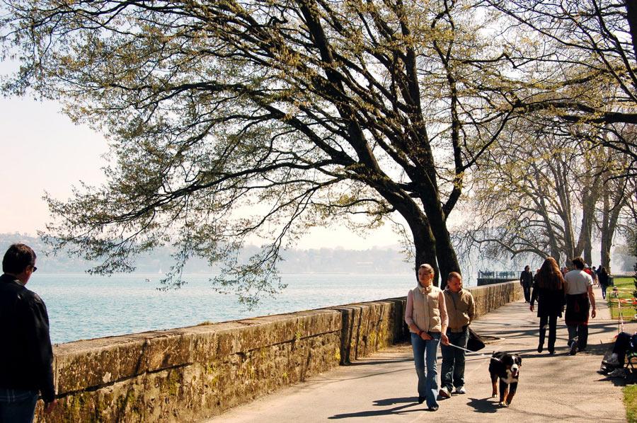 Pourquoi promener son chien ?