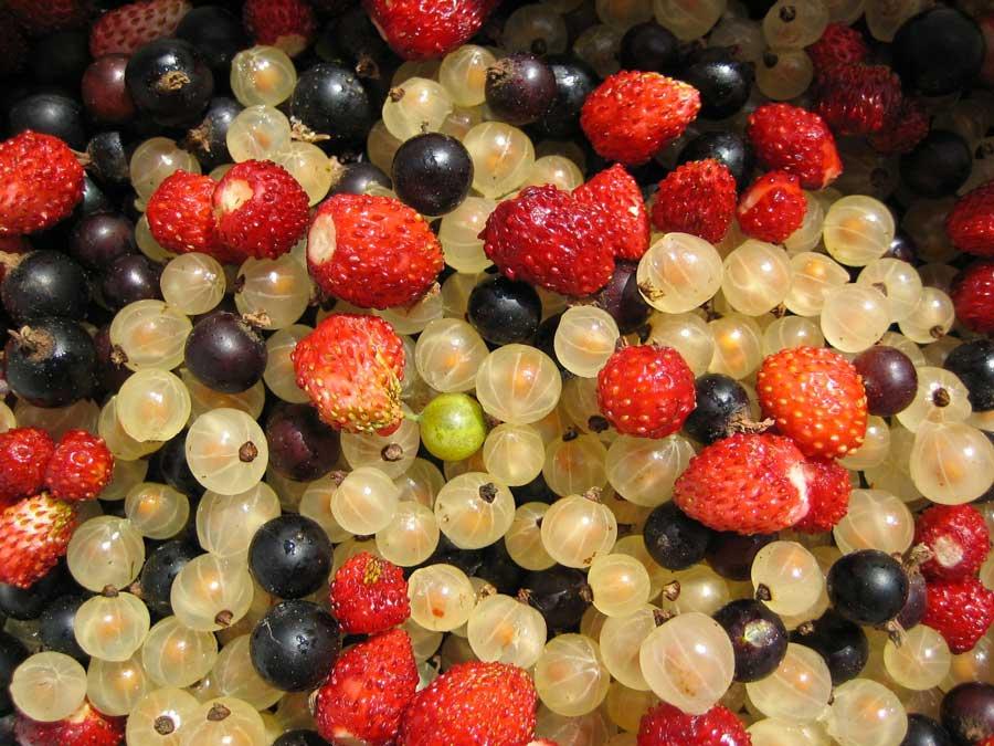 3 fruits rouges très bons pour la santé