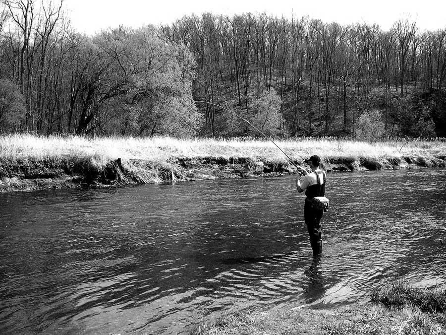 Découvrez les vertus méconnues de la pêche